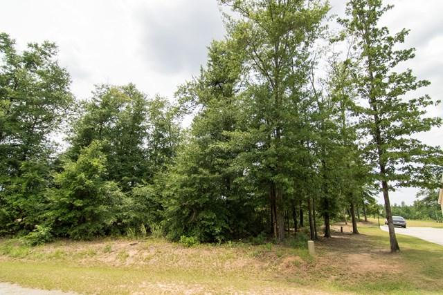 108 Meadow View Lane, Waynesboro, GA 30830 (MLS #415087) :: Southeastern Residential