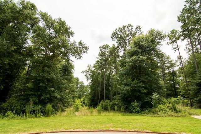 129 Ridge Pointe Drive, Waynesboro, GA 30830 (MLS #415088) :: Melton Realty Partners