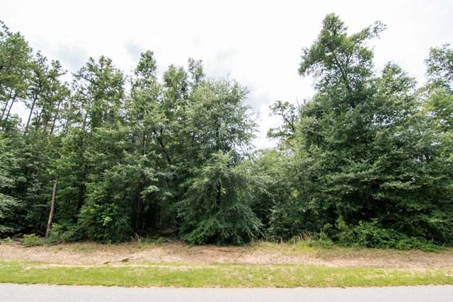 122 Ridge Pointe Drive, Waynesboro, GA 30830 (MLS #415091) :: Melton Realty Partners