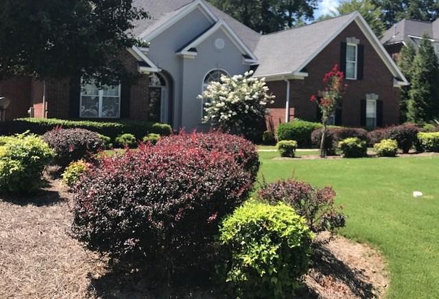 125 Blue Heron Lane, North Augusta, SC 29841 (MLS #417172) :: Better Homes and Gardens Real Estate Executive Partners