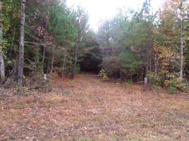 4380 Purvis School Road, Stapleton, GA 30823 (MLS #420723) :: Shannon Rollings Real Estate