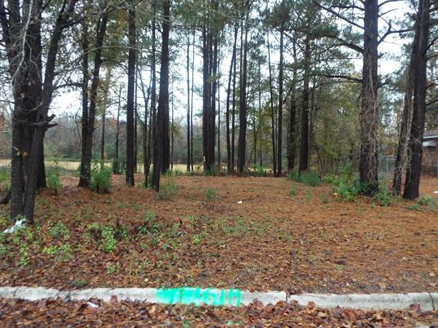 2924 Audubon Place, Augusta, GA 30906 (MLS #421110) :: Melton Realty Partners