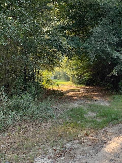 4004 Gracewood Drive, Augusta, GA 30906 (MLS #446405) :: Melton Realty Partners