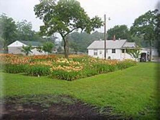 2541 Lumpkin Road, Augusta, GA 30906 (MLS #446571) :: RE/MAX River Realty