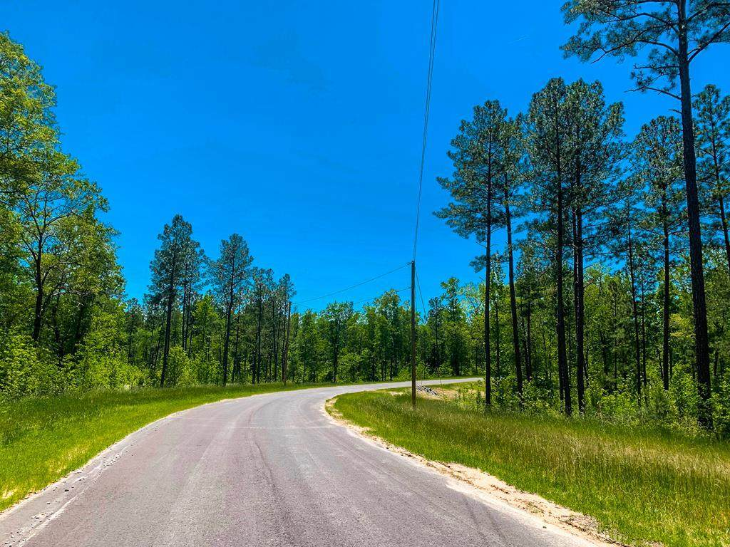 650 Smith Oaks Drive - Photo 1
