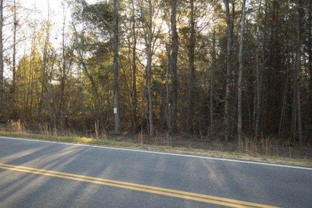 3209-19 Highway 88 - Photo 1