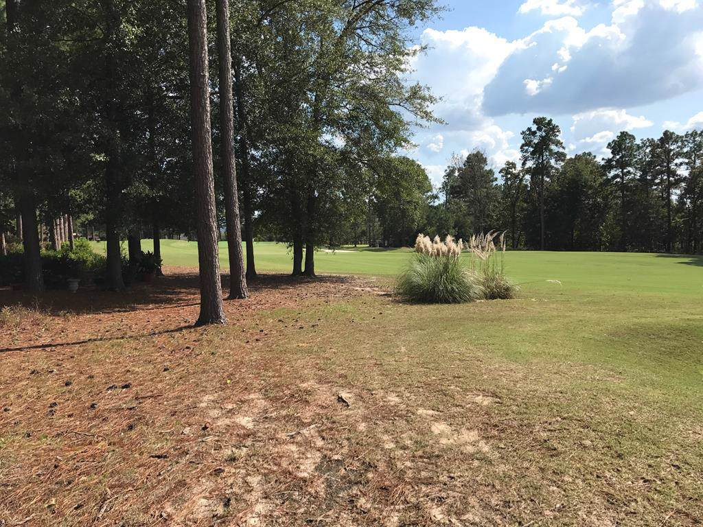 219 White Cedar Way - Photo 1
