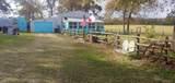 443 County Road 234 - Photo 15