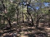109 San Felipe - Photo 4