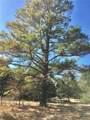 tbd County Road 308 - Photo 3