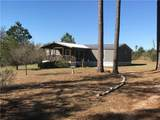 562 Pine Tree Loop - Photo 1