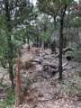 TBD Lumberjack Ct - Photo 3