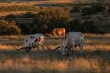 1400 Cattle Creek Rd - Photo 7