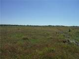 Tract 11 Private Road 3642 - Photo 5