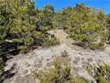 8902 Eagle Pass - Photo 1