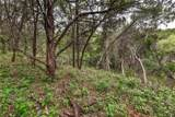 0000 Trail Of Madrones - Photo 11