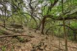 0000 Trail Of Madrones - Photo 9
