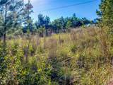 Lot 69 River Forest Dr - Photo 13