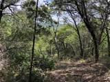 8601 Bar K Ranch Rd - Photo 4