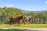 962 Ranch Road 1323 - Photo 2