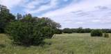 LOT 176 Blackbuck Ridge Dr - Photo 12