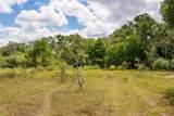 TBD (163.6 Acres) County Road 402 - Photo 23