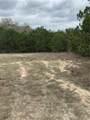 11 Spreading Oak Ln - Photo 2