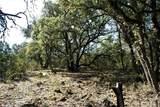 1b-1a Wolf Creek Ranch Rd - Photo 14