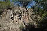 1b-1a Wolf Creek Ranch Rd - Photo 20