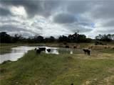 2867 Farm To Market 1376 - Photo 27