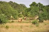 Ranch #3 Liberty Ranch Rd - Photo 10