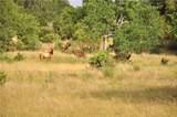 Ranch #3 Liberty Ranch Rd - Photo 11