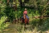 10210 Crumley Ranch Rd - Photo 34