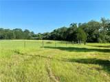 000 Split Oak Rd - Photo 3