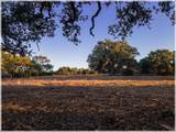 Lot 8 Sabinas Creek Ranch - Photo 11
