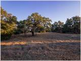 Lot 8 Sabinas Creek Ranch - Photo 12