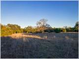 Lot 8 Sabinas Creek Ranch - Photo 16