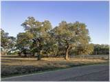 Lot 8 Sabinas Creek Ranch - Photo 26