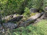 775 Cattle Creek Rd - Photo 28