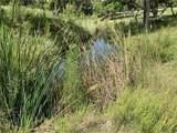 775 Cattle Creek Rd - Photo 33
