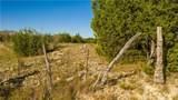 144 acres 202 - Photo 23
