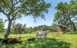 3401 Wolf Creek Ranch Rd - Photo 38
