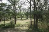 106 Enchanted Woods Trl - Photo 1