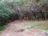 10101 Vista Del Sol - Photo 6