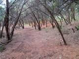 10101 Vista Del Sol - Photo 7