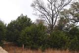 Lot2 Bell Springs Rd - Photo 13