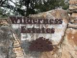 101 Wilderness Trl - Photo 1