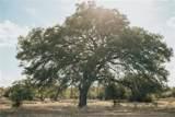 312 Monterey Oak Trl - Photo 1