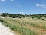 Lot 48 Cottonwood Mesa Dr - Photo 8