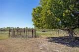 7724 County Road 144 (62.5 Acr - Photo 17